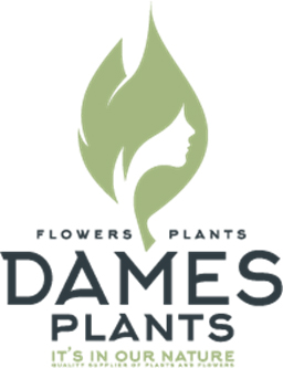 Logo Dames Plants