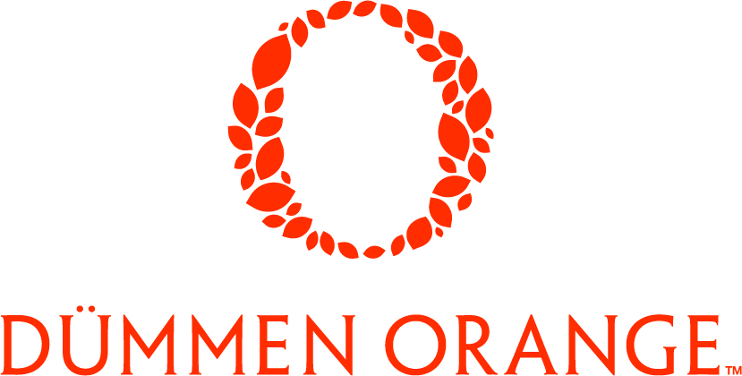 Logo Dümmen Orange