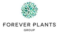 Logo Forever Plants Group