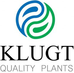 Logo Klugt Quality Plants