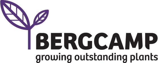 Logo Kwekerij Bergcamp