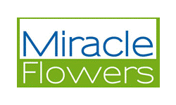 Logo Miracle Flowers