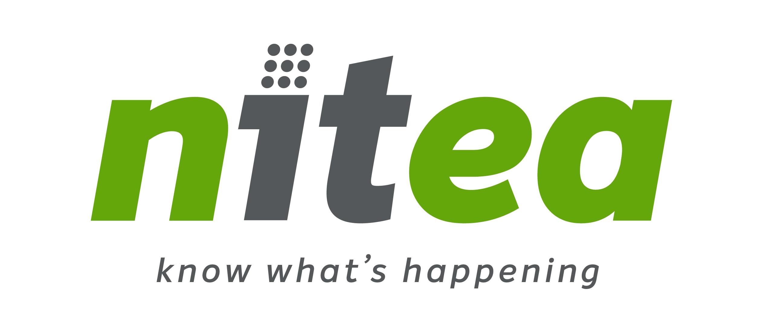 Logo Nitea IT Solutions