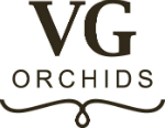 Logo VG Orchids