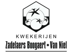 Logo Zadelaers Boogaert Kwekerijen